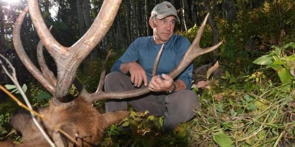 Mikes Elk 2